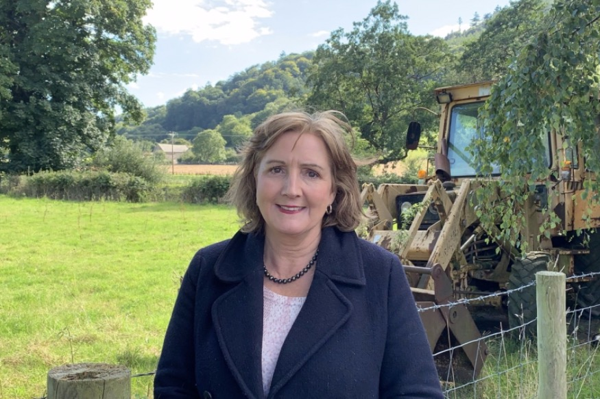 Shadow Minister and Aberconwy MS reveals Welsh Wool Pledge